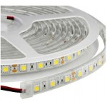 Tira LED 5 mts Flexible 48W 600 Led SMD 3528 IP54 Blanco Frío Alta Luminosidad