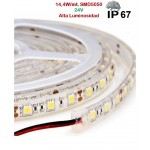 Tira LED 5 mts Flexible 24V 72W 300 Led SMD 5050 IP67 Blanco Neutro Alta Luminosidad